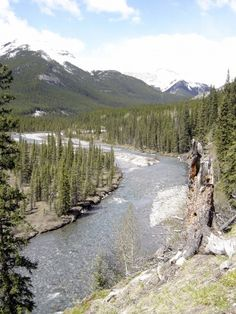 Little Elbow River Near Little Elbow Campground, Alberta