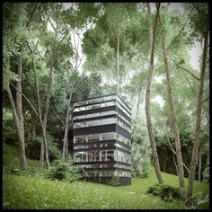 Japanese House in the Forest #modernvilla #modernhome #architecture #forest #japanesearchitecture #house