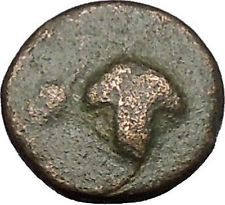 Ancient Greek City 300BC Grapes Ear of Grain Authentic Ancient Coin RARE i50560