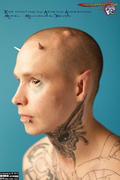 BME: Body Modification Ezine - The Biggest and Best Tattoo, Piercing and Body Modification Site Since 1994