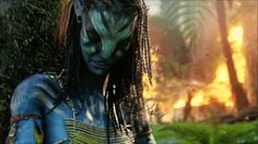 Post Your HD Pictures Of Neytiri! - Page 3 - Tree of Souls - An Avatar Community Forum Avatar Films, Avatar Movie, Beau Film, Avatar Tree, Dbz, Avatar James Cameron, Avatar Tattoo, World Gif, Film Aesthetic