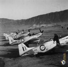 ☆ South African Air Force ✈ South African Air Force, F14 Tomcat, P51 Mustang, Korean War, Aeroplanes, Air Show, Military Aircraft, Aviation, Landscapes
