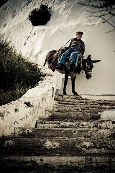 Untitled by Brandon Vandal - Santorini, the Old Way of Travel, Greece Santorini Island, Santorini Greece, Into The West, Greek Culture, Greece Travel, Greek Islands, Crete, Travel Around, Places To Travel