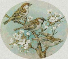 Птицы на ветке - Схема вышивки крестом