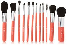 Best Makeup Brush Set | BH Cosmetics 12 Piece Wild Brush Set * More info could be found at the image url.(It is Amazon affiliate link) #developer Eyeliner Brush, Lip Brush, Makeup Brush Set, Makeup Brands, Best Makeup Products, Makeup Kit Essentials, Quick Travel, Best Makeup Brushes