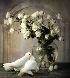 Two white doves with white roses in a clear glass vase. Love Birds, Beautiful Birds, Simply Beautiful, Beautiful Artwork, White Doves, Jolie Photo, Shades Of White, Bird Feathers, Floral Arrangements
