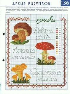 boletus cross stitch - Google-haku