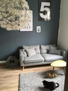 Wunderschönes Wohnzimmer in Aachener Altbauwohnung. Neben einer grauen Couch und einem flauschige Teppich sorgen auch die zwei kuschligen Katzen für Wohnfühlatmosphäre. Wohnung in Aachen.  #Wohnung #Wohnzimmer #Aachen #livingroom