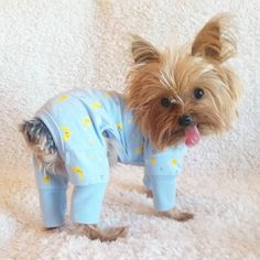 Can it be both #tot AND #tushietuesday ???  Thank you @wagdrobe for my adorable warm pj's   Perfect for these cold #MinneSnowta nights by littlebell_andtimmy