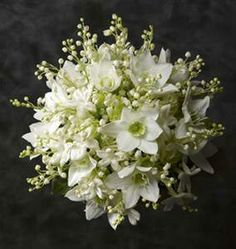Lily of the Valley and Daffodils we will have lots of these flowers !!!!!