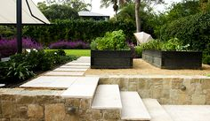 Joanne Green | Bilgola Plateau Project, Northern Beaches Sydney, Landscape Design, Swimming Pool Designs, Outdoor Dining, Entertainment Area, French Provincial Garden, Outdoor Kitchen, Glass Fencing, Garden Bed, Productive Garden, Outdoor Awning, Travertine Paving, Feature Stone Wall, Crepe Myrtle, Lilly Pilly, Spartan Juniper, Gardenias, Indian Hawthorn, Spanish Sage, Mediterranean Spurge, Carpet Bugle Weed, Blue Daze, NZ Rock Lily, vegetable garden.