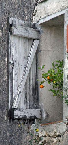 Orange tree in Provence, France Old Windows, Windows And Doors, Garden Windows, Cottage Windows, Window View, Open Window, Through The Window, Old Doors, Old Barns