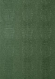 KISSIMMEE, Green, T75101, Collection Faux Resource from Thibaut