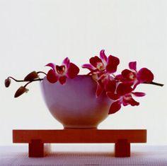 come essiccare i fiori creativamente