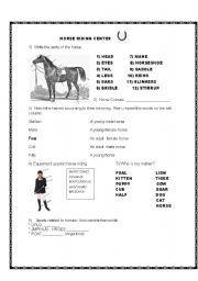 Award certificates full horse design hodges badge company english worksheet horse riding yadclub Images