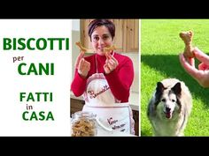 BISCOTTI PER CANI FATTI IN CASA DA BENEDETTA - Homemade Dog Treats