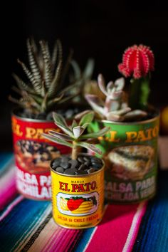Close up of table decor - succulents in Mexican cans + serapes Mexican Themed Weddings, Day Of The Dead Party, Fiesta Party, Taco Party, Mexican Party, Party Planning, Party Time, Halloween Party, Creations