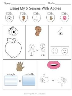 5 Senses with Apples Freebie