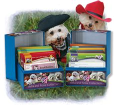 Pioneer Valley Books - Reading Recovery Books, Resources for Early Literacy - Bella and Rosie Collection
