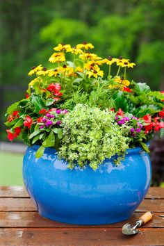 Video: How to make a plant a pretty cottage garden in a pot.