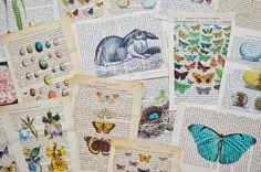 let's get crafty: DIY vintage book page art.