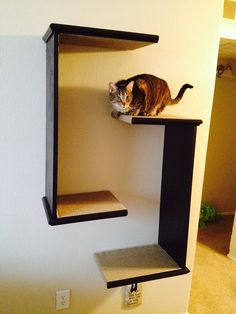 Mounting hardware included!!!! I love to create and build custom, unique furniture. My daughter moved into a small space and needed a cool cat tree solution. This is a SET of 2 C shaped units that can be hung in several configurations. Each unit is approximately 36 tall with shelves of