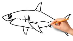 How To Draw Shark Easy Step by Step | Coloring Pages For Kids Shark Coloring Pages, Coloring Pages For Kids, Drawing For Kids, Fancy, Drawings, Videos, Youtube, Colouring Pages For Kids, Coloring For Kids