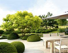 Design mit Pflanzen - Moderne Architektur im Garten Garten- und Ideenbücher BJVV: Amazon.de: Peter Janke, Jürgen Becker (Fotograf), Modeste Herwig (Fotograf), Volker Michael (Fotograf): Bücher