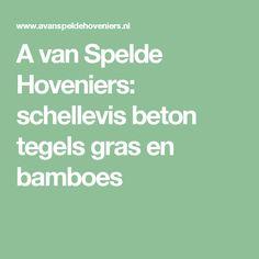 A van Spelde Hoveniers: schellevis beton tegels gras en bamboes
