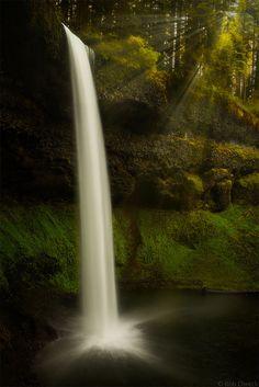 Silver Falls State Park, Oregon; photo by Rob Dweck