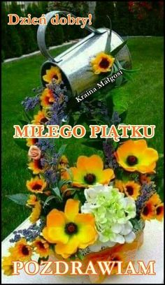Good Morning, Flowers, Plants, Sleep, Spring, Polish, Friday, Balcony, Pictures