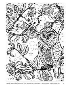 Awesome Owls Coloring Book by Fox Chapel Publishing - issuu (see my owl board for more)