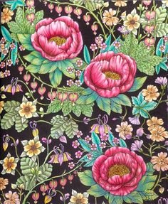 #野の花のぬり絵ブック #WildFlowers #MariaTrolle #coloringbook #adultcoloringbook…