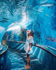 When walking down Market Street in San Francisco… just keep swimming, just keep swimming🐟🎶 Who else loves Finding Nemo as much as I do… Dubai Vacation, Vacation Places, Places To Travel, Dubai Resorts, Travel Pose, Travel Goals, Travel Photos, Creative Photography, Photography Poses