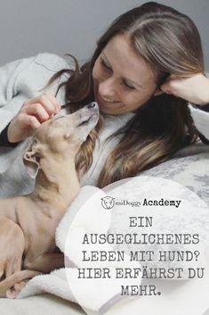 #Hund || Tipps || Ideen || #Hunde ||Wissenswertes || #Hundeliebe