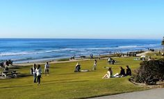 Del Mar's Seagrove and Powerhouse parks, which are basically the same place, are two of my favorite parks. They are great places to take the family, walk the dog, or learn how to surf.