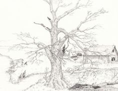 Landscape Drawings In Pencil | nature drawing landscape and wildlife drawing here are some tutorials ...