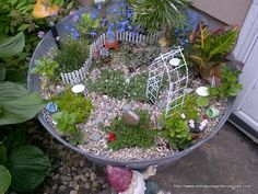18 Ideas container house design diy garden ideas for 17 of The Coolest DIY Fairy Garden Ideas For Small Backyards Large Fairy Garden, Fairy Garden Plants, Fairy Garden Furniture, Fairy Garden Supplies, Fairy Garden Houses, Garden Ideas Australia, Dish Garden, Little Gardens, Chinese Garden