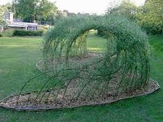 Google Image Result for http://commondesigns.files.wordpress.com/2013/02/living_willow_structure_-_spencer_jenkins-1.jpg