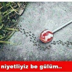 ���� #karikatür #mizah #caps #vscophile #komik #vscoturkey #istanbul #ankara #izmir #karadeniz #komedi #penguen #leman #gırgır #antalya #mersin #adana #uykusuz #sahur #denizli #iyigeceler #diyarbakır #vscoturkey #ramazan #beşiktaş #kahramanmaraş #hunili #hayırlıcumalar #günaydın #goodmorning http://turkrazzi.com/ipost/1524307883847508028/?code=BUnbfG5DuA8
