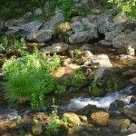 Headwaters at the Mt Shasta City Park, Mt. Shasta, California, USA