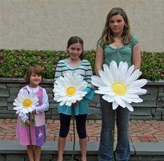 Large paper Gerbera daisy flowers