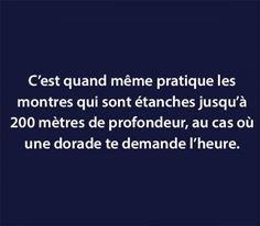 et vlan pour les frimeurs Words Quotes, Me Quotes, Funny Quotes, Techno, Quote Citation, Slogan Tshirt, Lol, Let's Have Fun, French Quotes