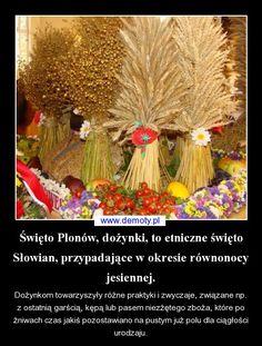 Święto Plonów, dożynki, to etniczne święto Słowian, przypadające w okresie równonocy jesiennej. Pictures On String, Felt Pictures, Spas, String Art, Folklore, Poland, Harvest, Celebration, Culture