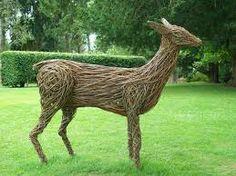 willow deer