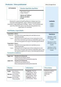 Plantillas de Currículum Vitae Funcional: Modelo 4