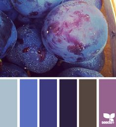 Produced Hues - http://design-seeds.com/index.php/home/entry/produced-hues15
