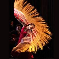 FLAMENCO FESTIVAL LONDON 2014 to feature Miguel Poveda, Farruquito, Angel Munoz, Belen Maya Company and many more. Tickets on sale Monday 11th Nov --> http://www.allgigs.co.uk/view/artist/58709/Flamenco_Festival_London.html