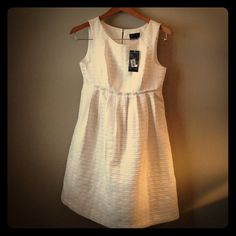 Max & Cleo Textured White Dress NWT White dress, above the knee. 100% polyester, adorable on! Max & Cleo Dresses