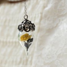 ~ Yellow Rose Flower Tiny Terrarium Necklace bridal wedding bridesmaid beauty and the beast summer garden sterling silver jewelry glass vial miniature (Mini Bottle Garden) Yellow Rose Flower, Yellow Roses, Or Rose, Blue Morpho, Morpho Butterfly, Terrarium Necklace, Rose Necklace, Mini Bottles, Flower Pendant